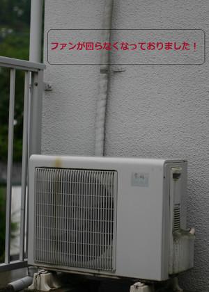 Img_5683_4