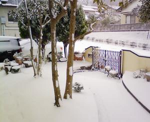 フワフワの雪があたり一面に真っ白!