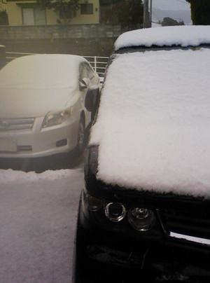 この冬初積雪!